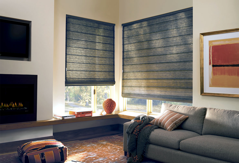 Рулонная штора в гостиной в современном интерьере.